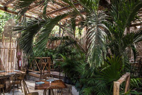 Luxury Restaurants Of The World Rosa Negra Tulum Annie